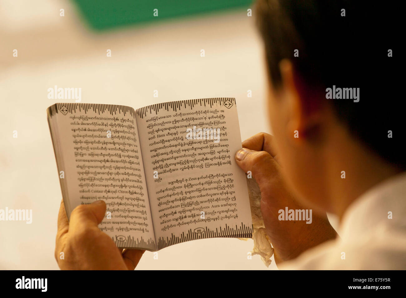 Devout Buddhist reading holy scripture, from behind, Yangon, Myanmar - Stock Image