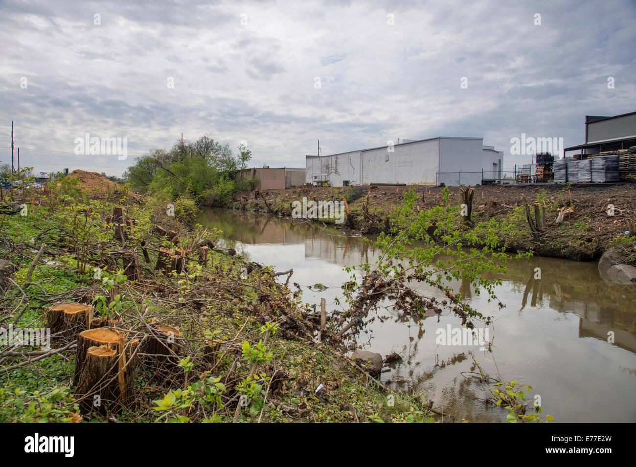 Trees Cut Down And Vegetation Removed Along Stream - Stock Image