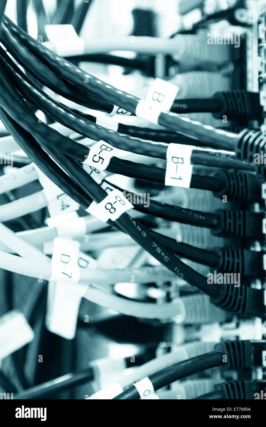 Ethernet cables plugged into a high end router machine at a computer data center supporting cloud computing - Stock Image
