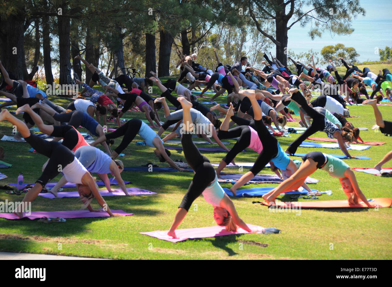 Daily Free Outdoor Exercise And Yoga Classes At Lantern Bay Park In Dana Point California