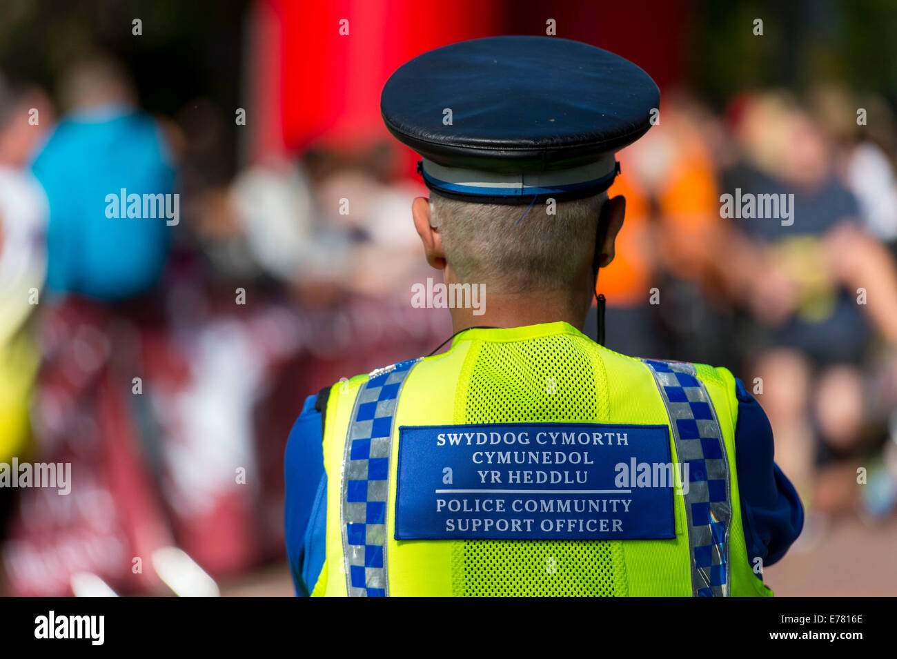 A Welsh police community support officer (PCSO) looks on during an event. - Stock Image