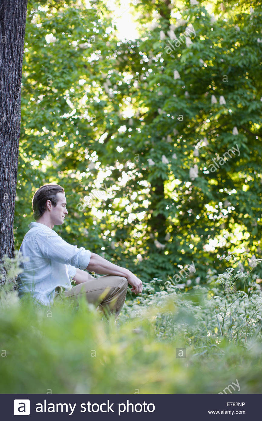 Man meditating in field of flowers - Stock Image