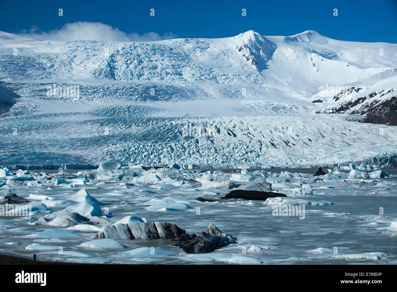 the Vatnajokull Glacier decending to sea level at Fjallsarlon, eastern Iceland - Stock Image