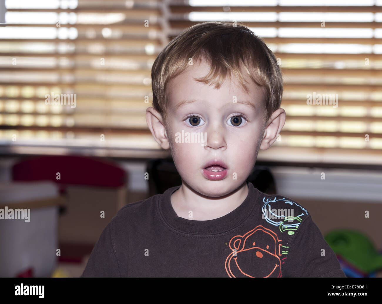 2 Year Old Young Boy With Surprised Look On His Face