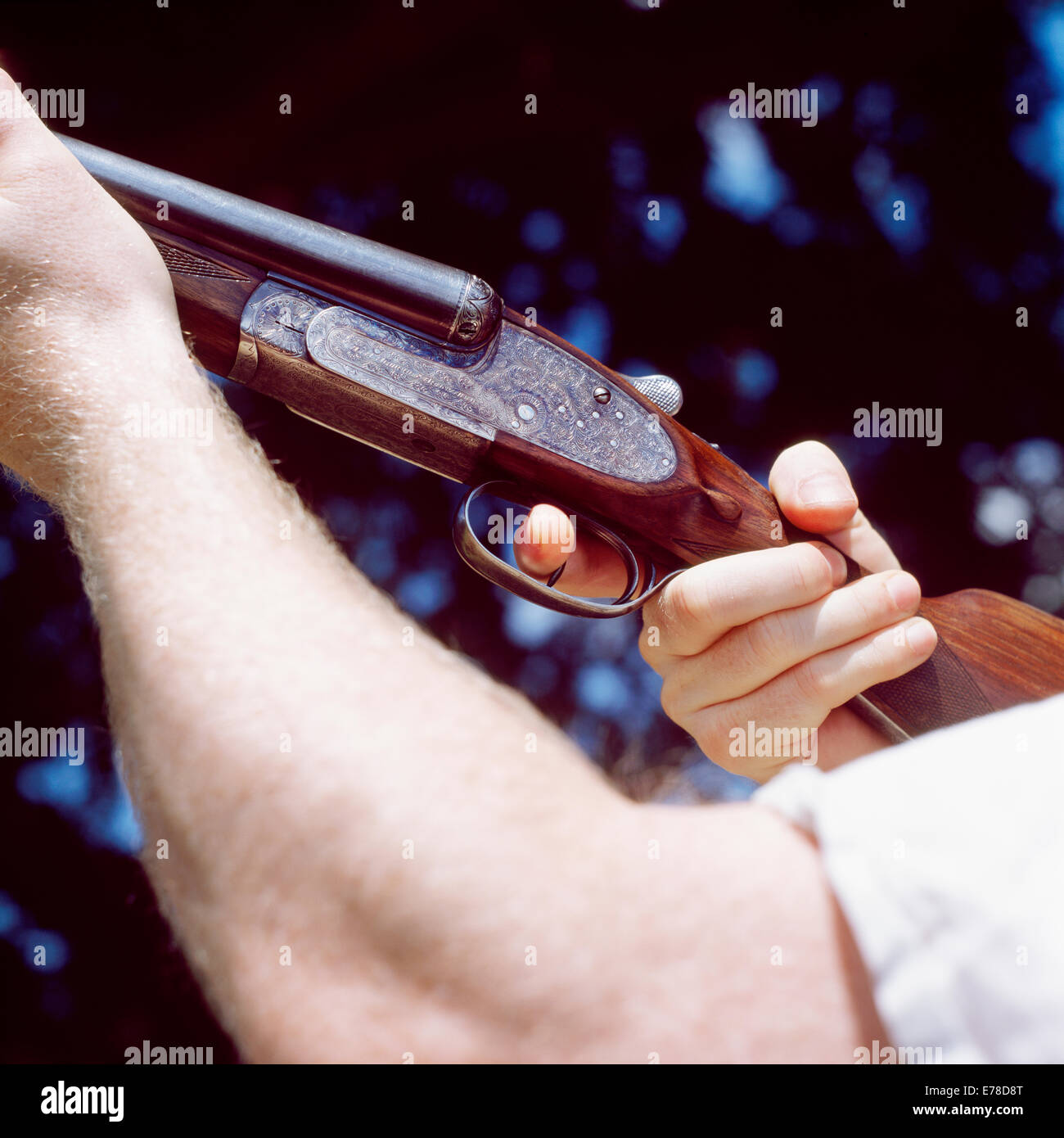 A double barreled Shotgun is pointed into the air with the operator using his finger to pull the trigger. - Stock Image