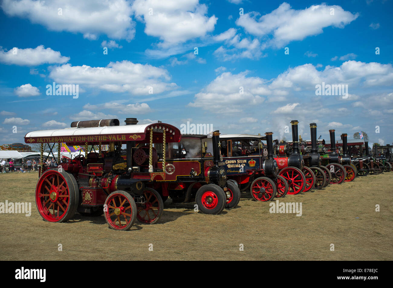 Line up of traction engines at a steam enthusiast's fair in England. - Stock Image