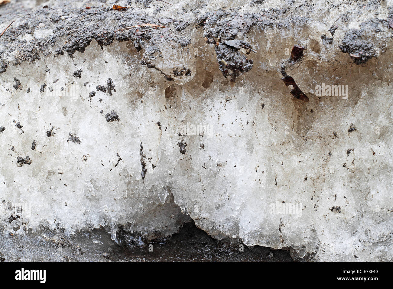 Spring dirty snow closeup - Stock Image
