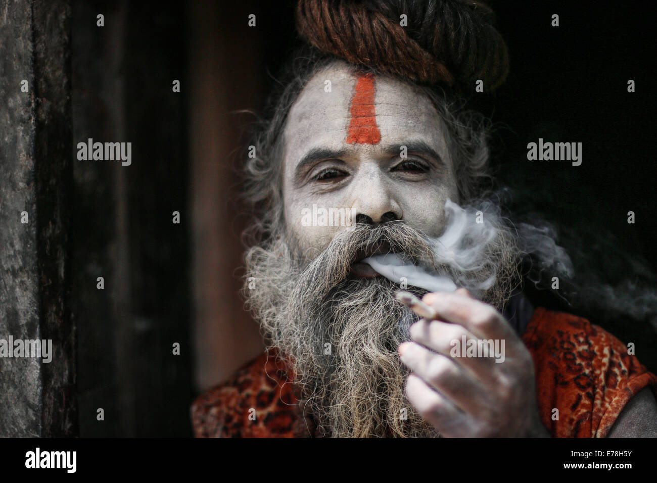 Smoking Sadhu - Stock Image