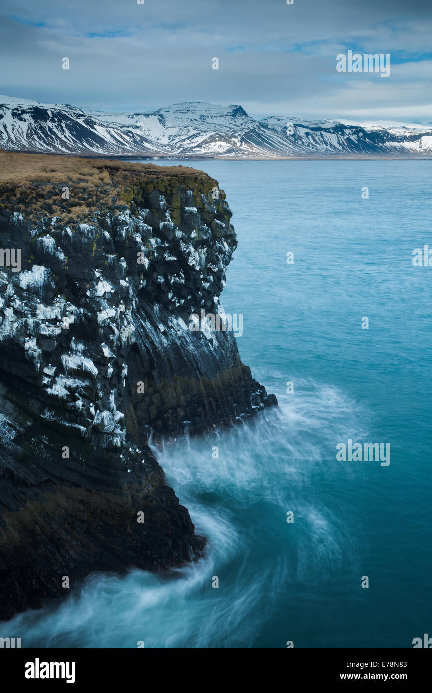 the cliffs streaked with the guano of  kittiwakes  on the coast nr Arnastapi, Snaefellsnes Peninsula, western Iceland - Stock Image