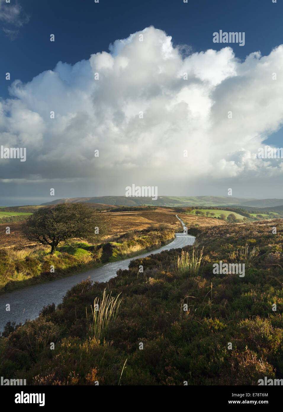 the road to Stoke Pero, Dunkerry Beacon, Exmoor National Park, Somerset, England, UK - Stock Image