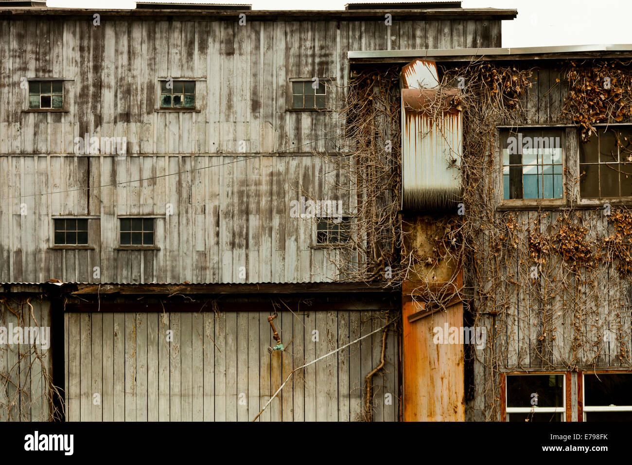 Derelict buildings on the shore of Lake Union in Seattle - Stock Image