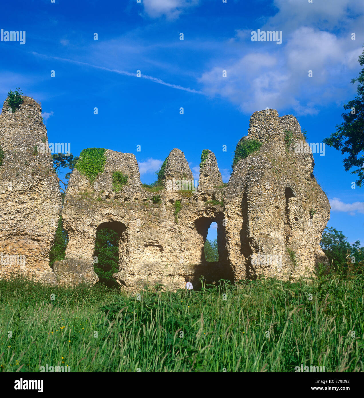 The ruins of Odiham Castle Hampshire UK - Stock Image