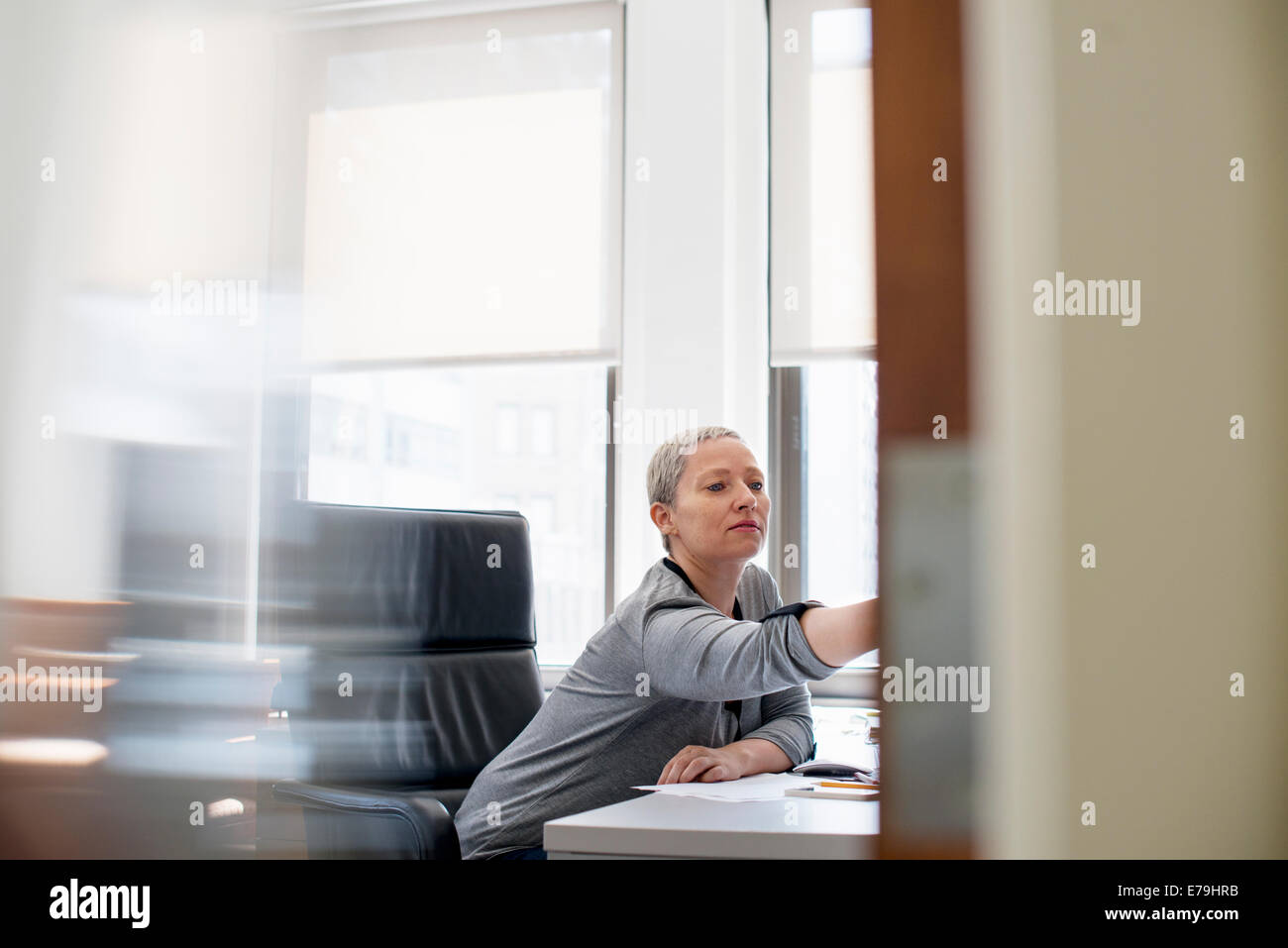 A woman working in an office alone, at her desk leaning forward to look at something. - Stock Image