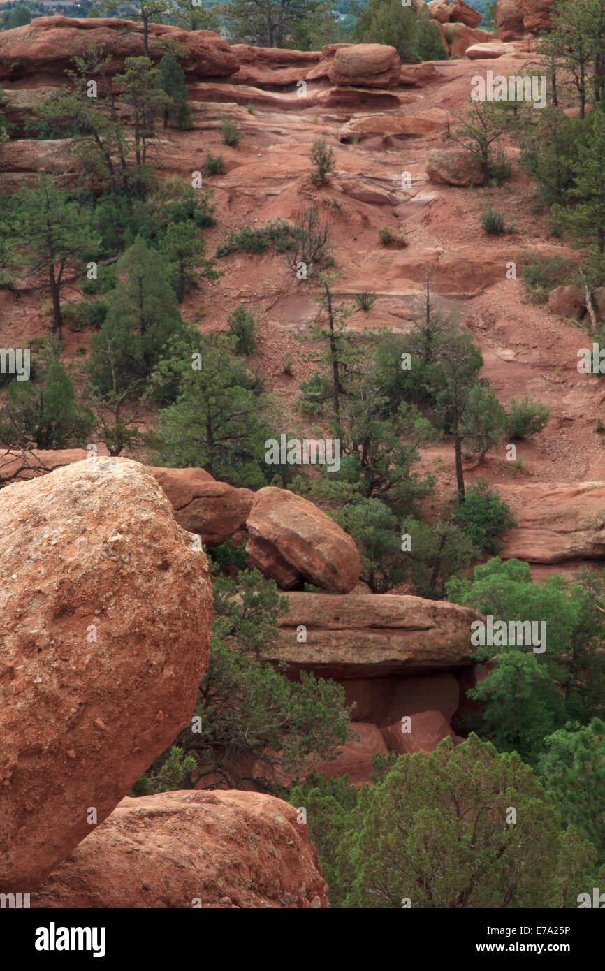 Red Boulders and Green trees in Garden of the Gods Colorado - Stock Image