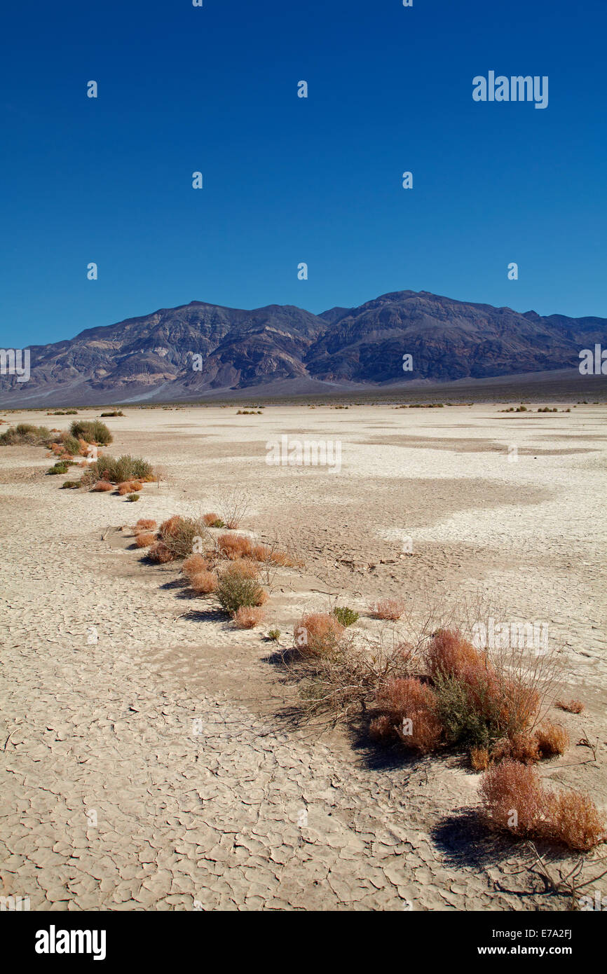 Salt Pan, Panamint Valley, and Panamint Range, Death Valley National Park, Mojave Desert, California, USA - Stock Image