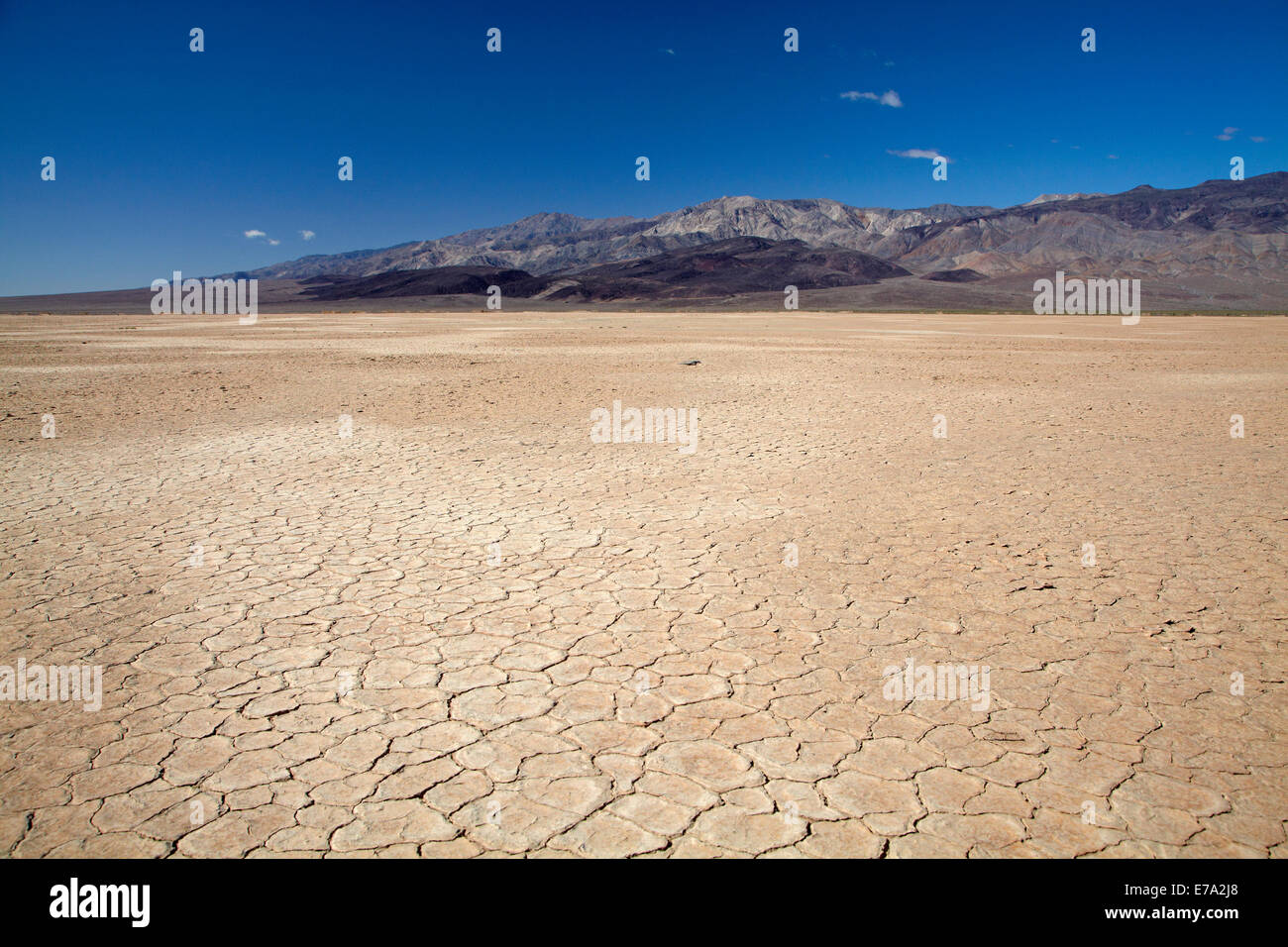 Dried mud in salt Pan, Panamint Valley, and Argus Range, Death Valley National Park, Mojave Desert, California, - Stock Image