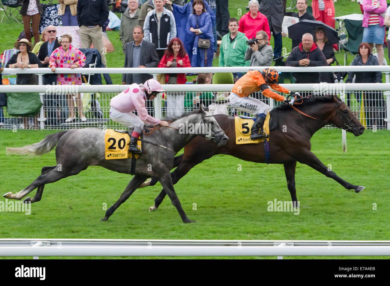York Races the Ebor weekend 2012 - Stock Image