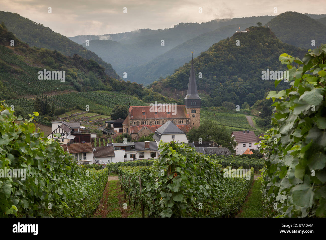 View from the famous wine trail on the wine village Mayschoss, the Ahr Valley is a very popular and much-visited - Stock Image