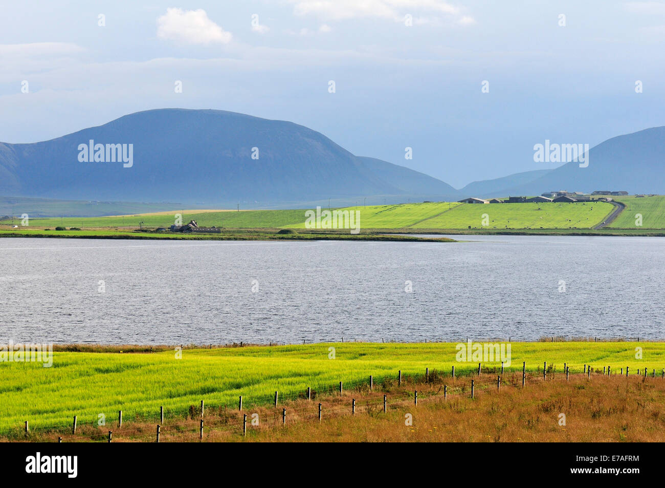 Typical landscape at Loch Stenness on the Mainland, Orkney, Scotland, United Kingdom Stock Photo