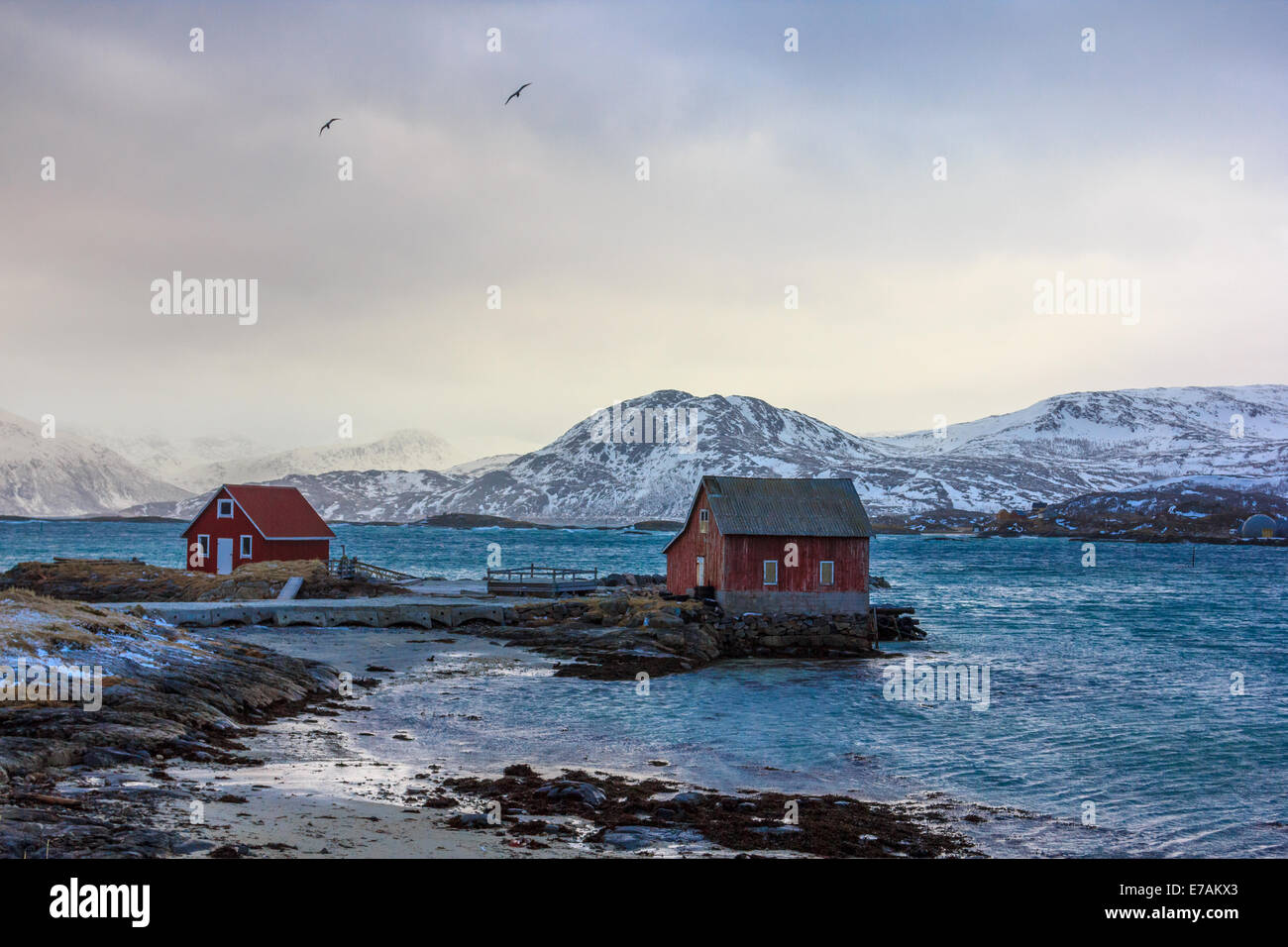 Traditional rorbu in Lofoten islands in Norway - Stock Image