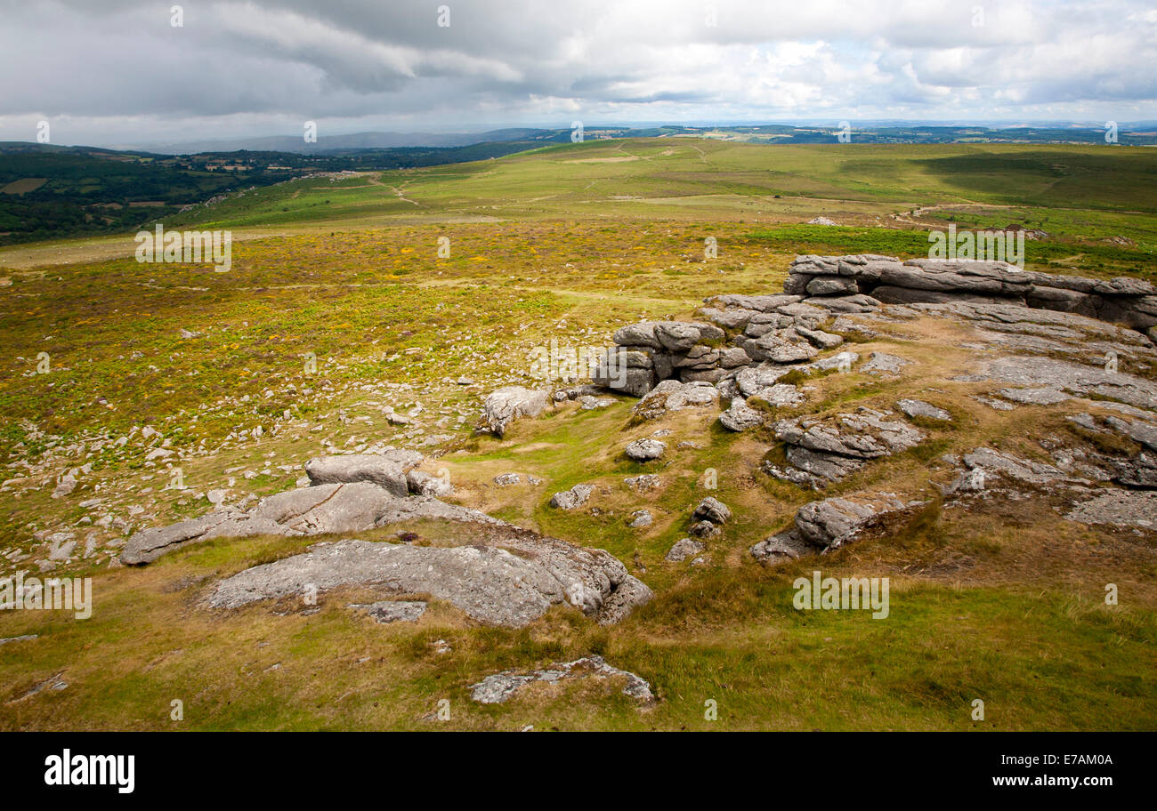 Upland granite landscape near Haytor, Dartmoor national park, Devon, England - Stock Image