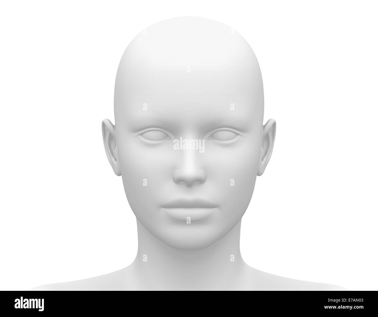 Female Head Muscles Anatomy - Front view Stock Photo: 73380051 - Alamy