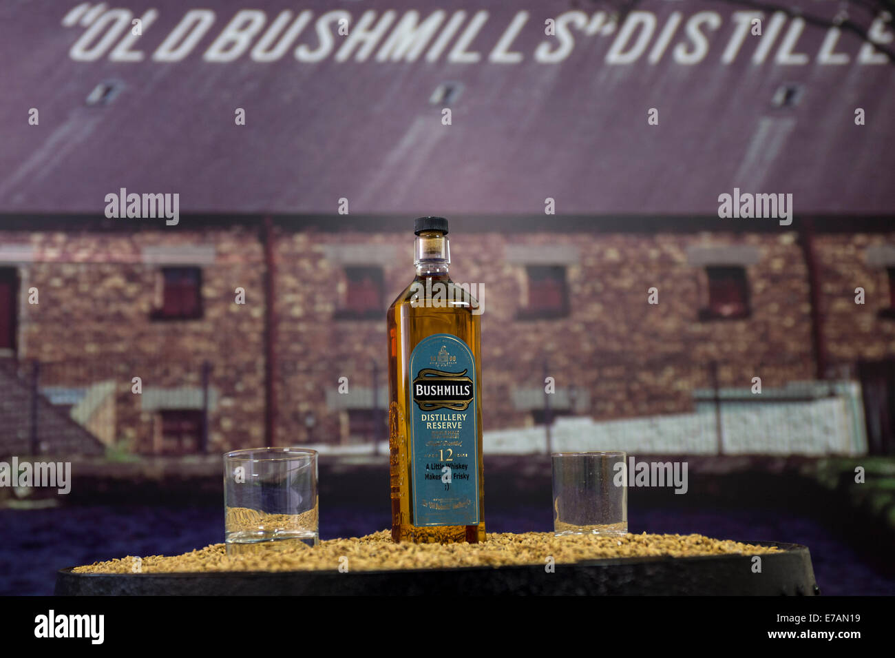 12 year old Bushmills single malt Distillery Reserve whiskey. - Stock Image