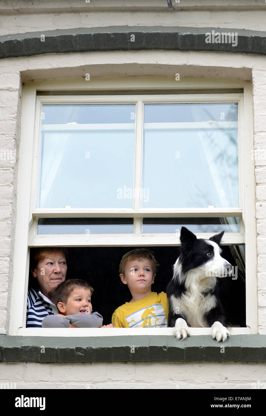 Family children with pet dog looking through home window Uk - Stock Image