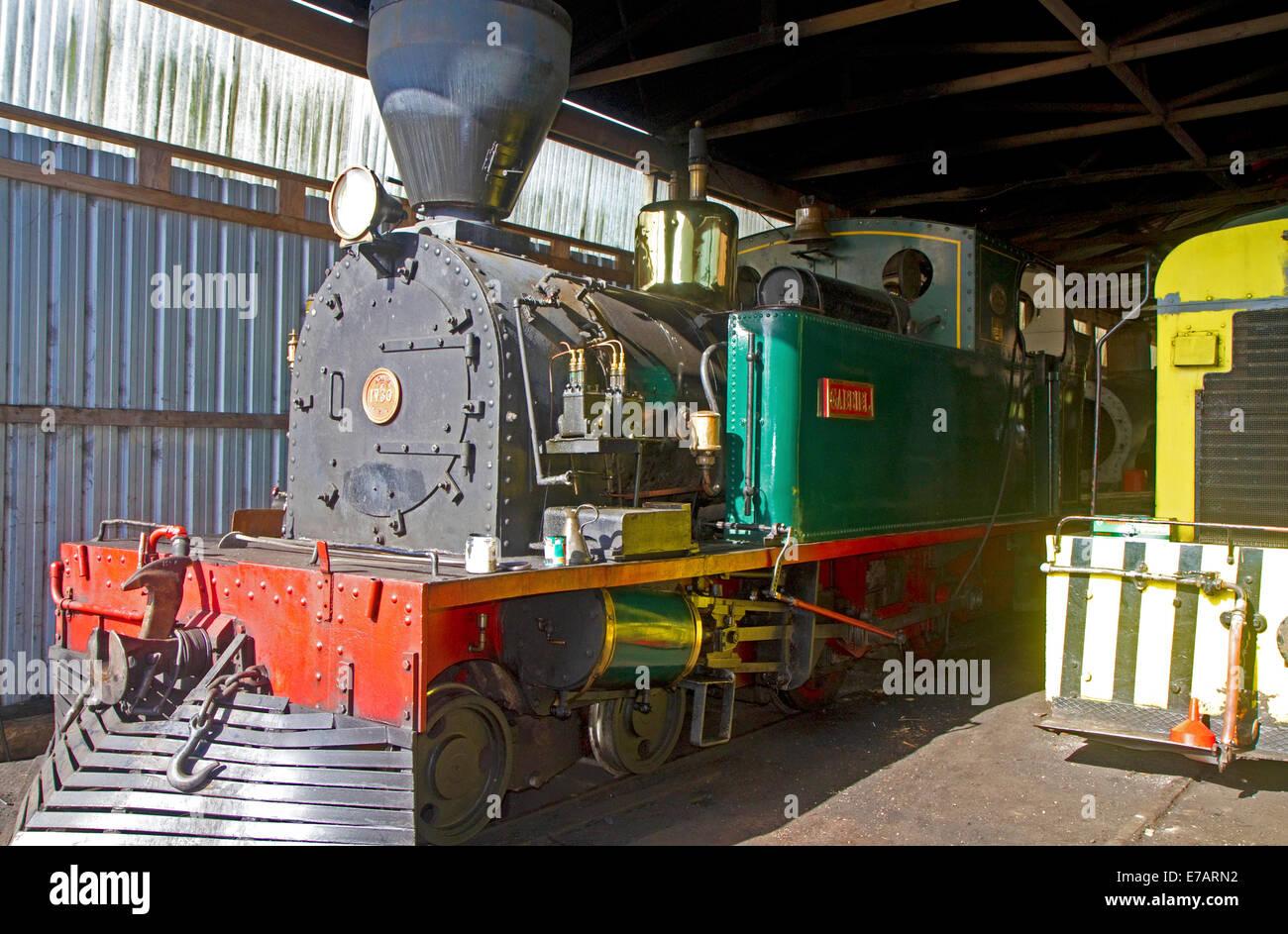 Bay of Islands Vintage Railway locomotive at the town of Kawakawa, North Island, New Zealand. - Stock Image