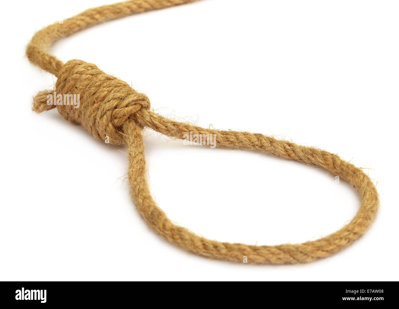 Hanging noose over white background - Stock Image