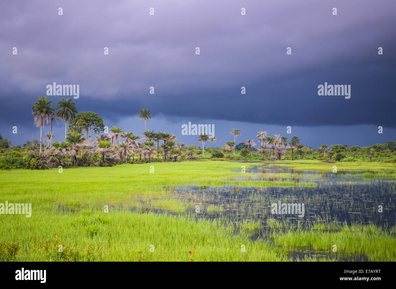 Threatening sky during the rainy season in Sierra Leone, West Africa - Stock Image