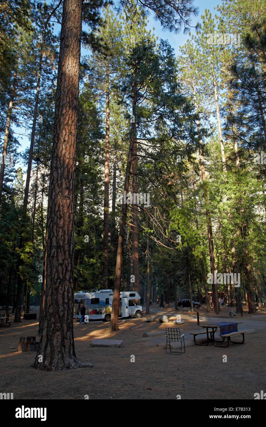 Upper Pines Campground, Yosemite Valley, Yosemite National Park, California, USA - Stock Image