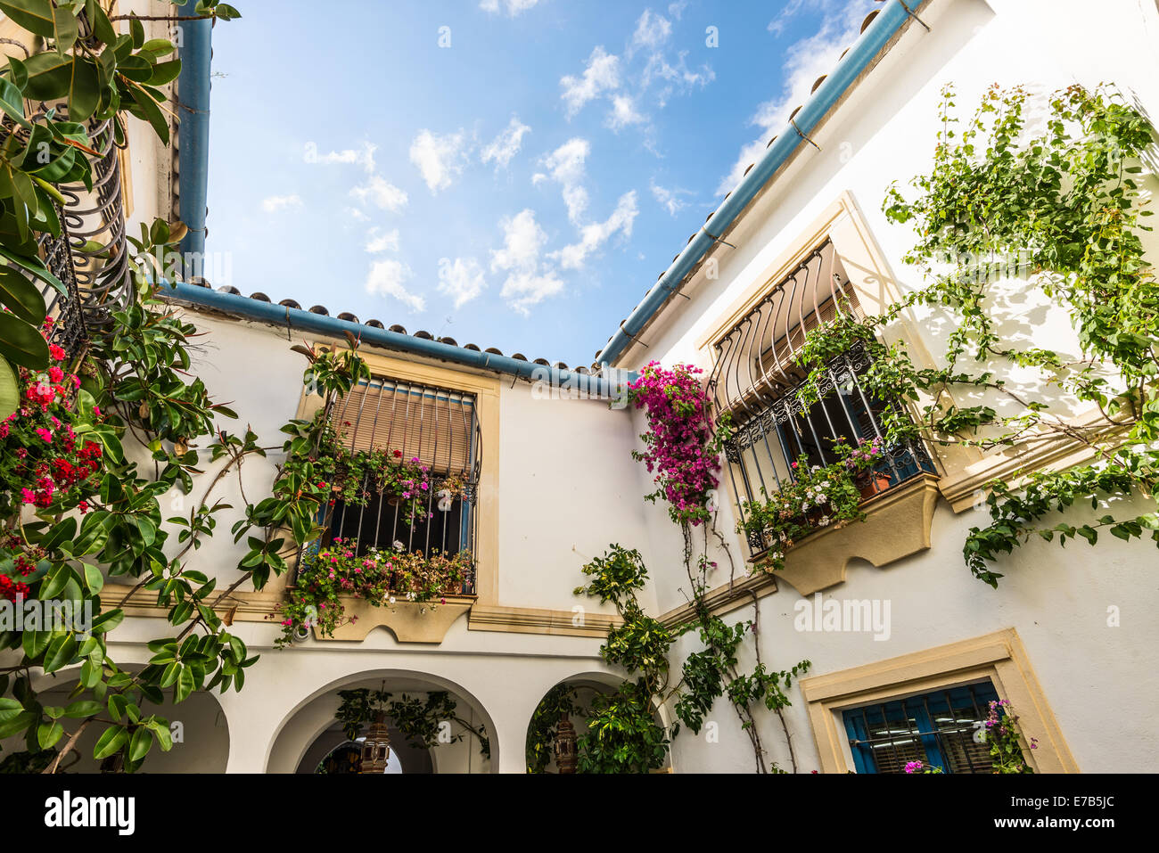 Typical inner court in Cordoba, Andalusia, declared Intangible Heritage of Humanity declared by UNESCO - Stock Image
