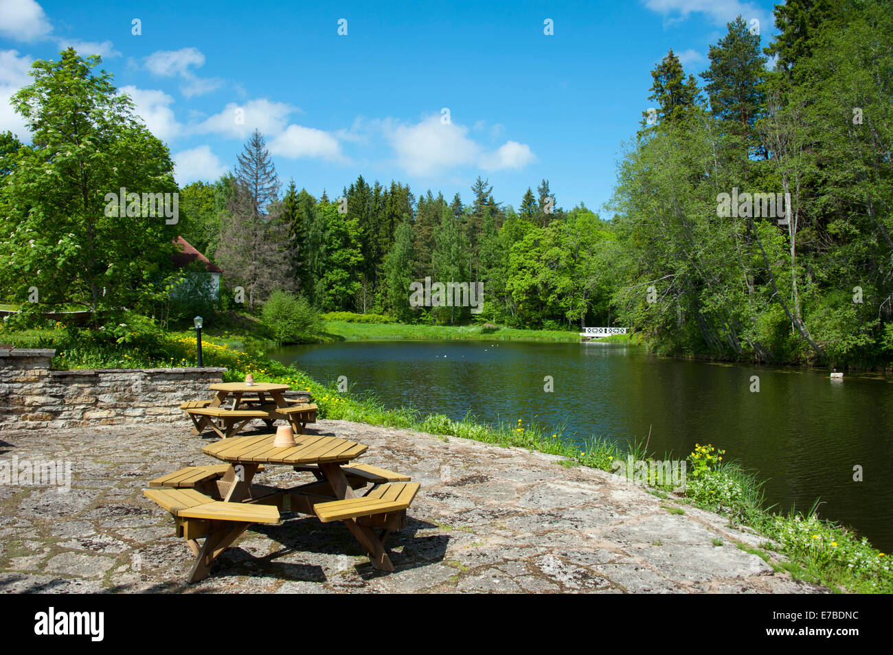 Prime Picnic Benches And Tables Stock Photos Picnic Benches And Onthecornerstone Fun Painted Chair Ideas Images Onthecornerstoneorg