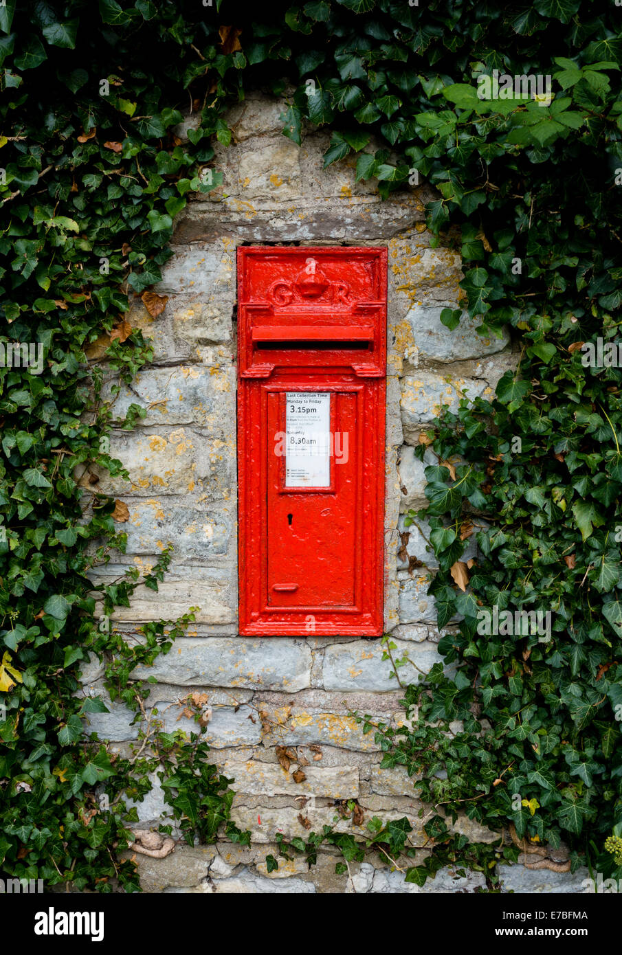 Georgian ( Vth ) post box in the ivy clad stone wall of a Somerset village UK - Stock Image