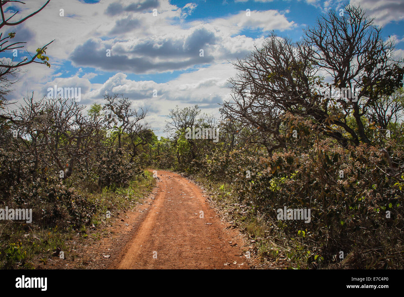 Road to nowhere - Hot country road leading to no destination - Stock Image