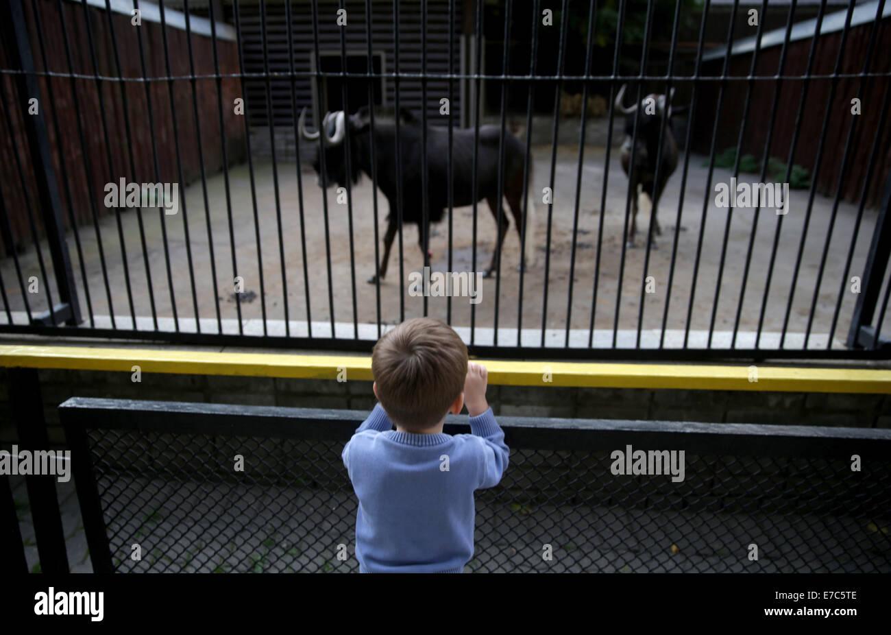 Moscow, Russia. 11th Sep, 2014. Achild at the Moscow Zoo. © Stanislav Krasilnikov/ITAR-TASS/Alamy Live News - Stock Image