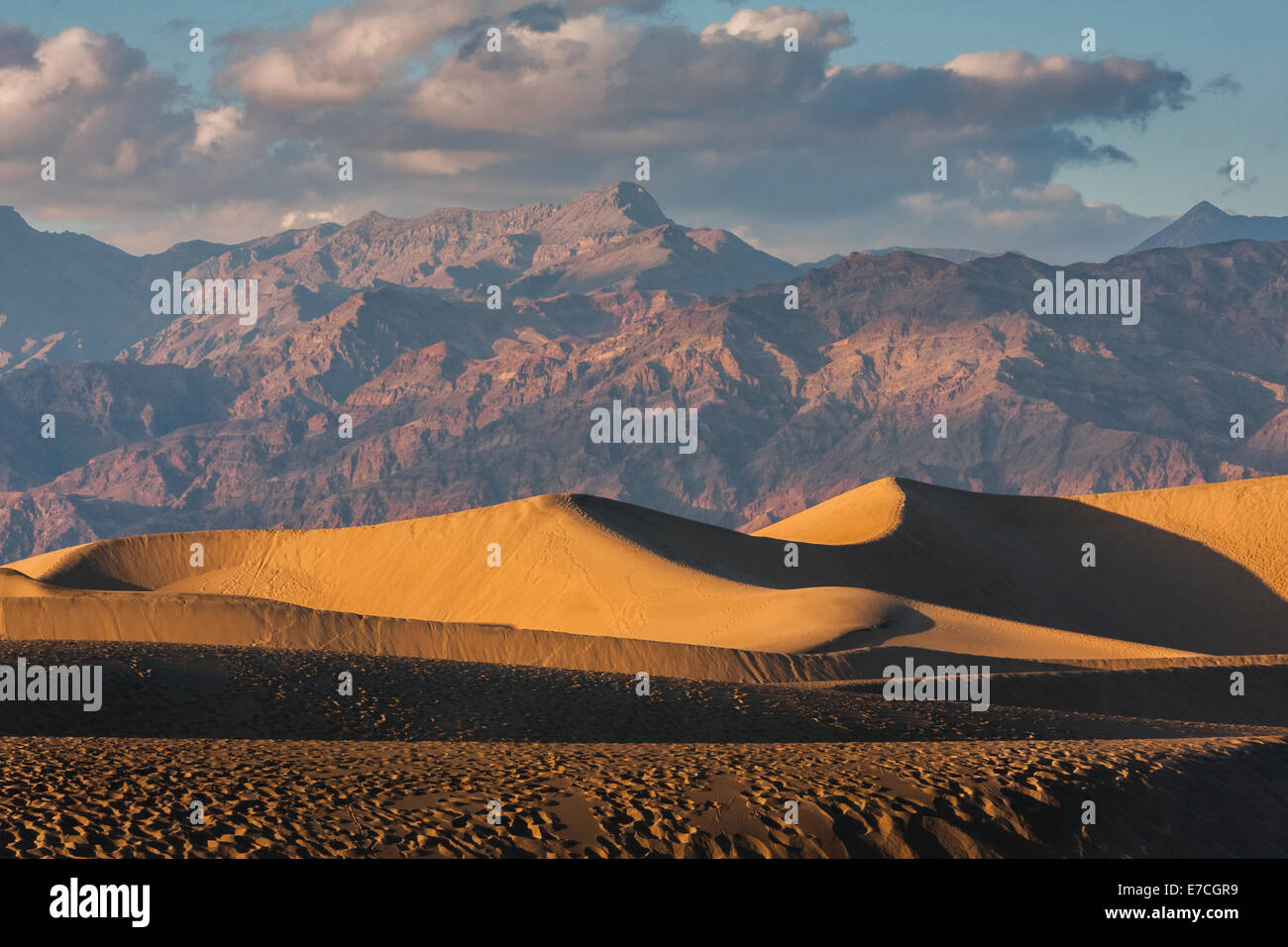 Early morning sunlight, Mesquite Flat sand dunes, Death Valley National Park, California, USA - Stock Image