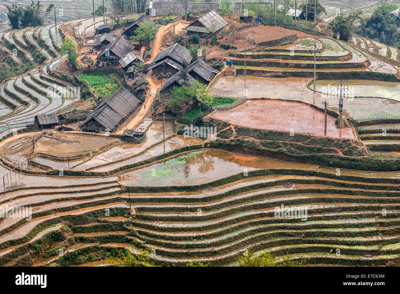 Hmong farms surrounded by submerged rice paddies in late winter. - Stock Image