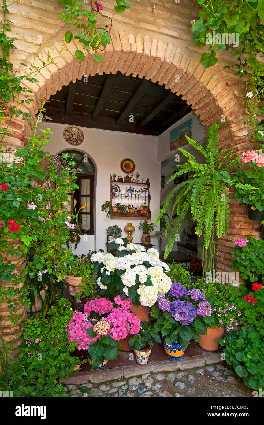 Typical courtyard, Flowerspots, Cordoba, Region of Andalusia, Spain, Europe Stock Photo