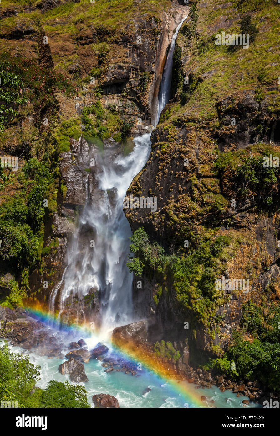 Mountain waterfall in forest, Annapurna region, Nepal. - Stock Image