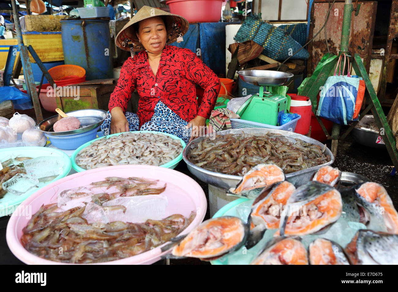 A woman at a fish stall at the local market the Mekong River in Sa Dec, Vietnam. - Stock Image