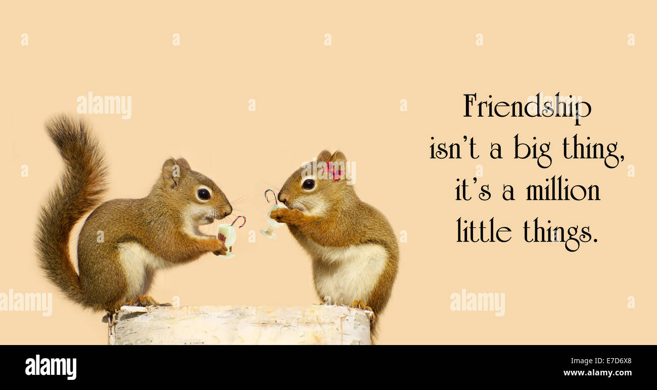 Inspirational quote by unknown artist with two little squirrel friends sharing some Christmas cheer. - Stock Image