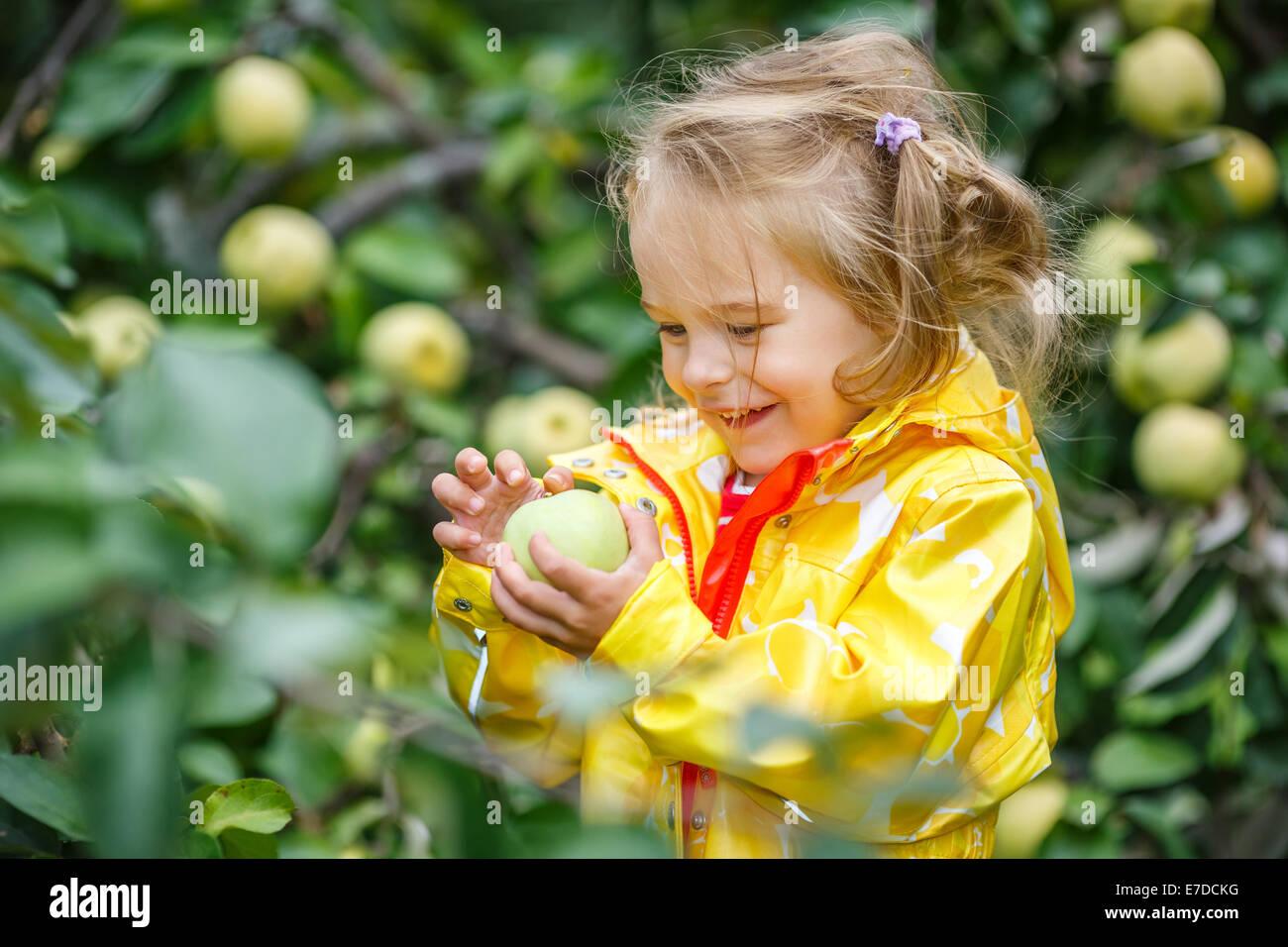 Little girl in the apple garden - Stock Image