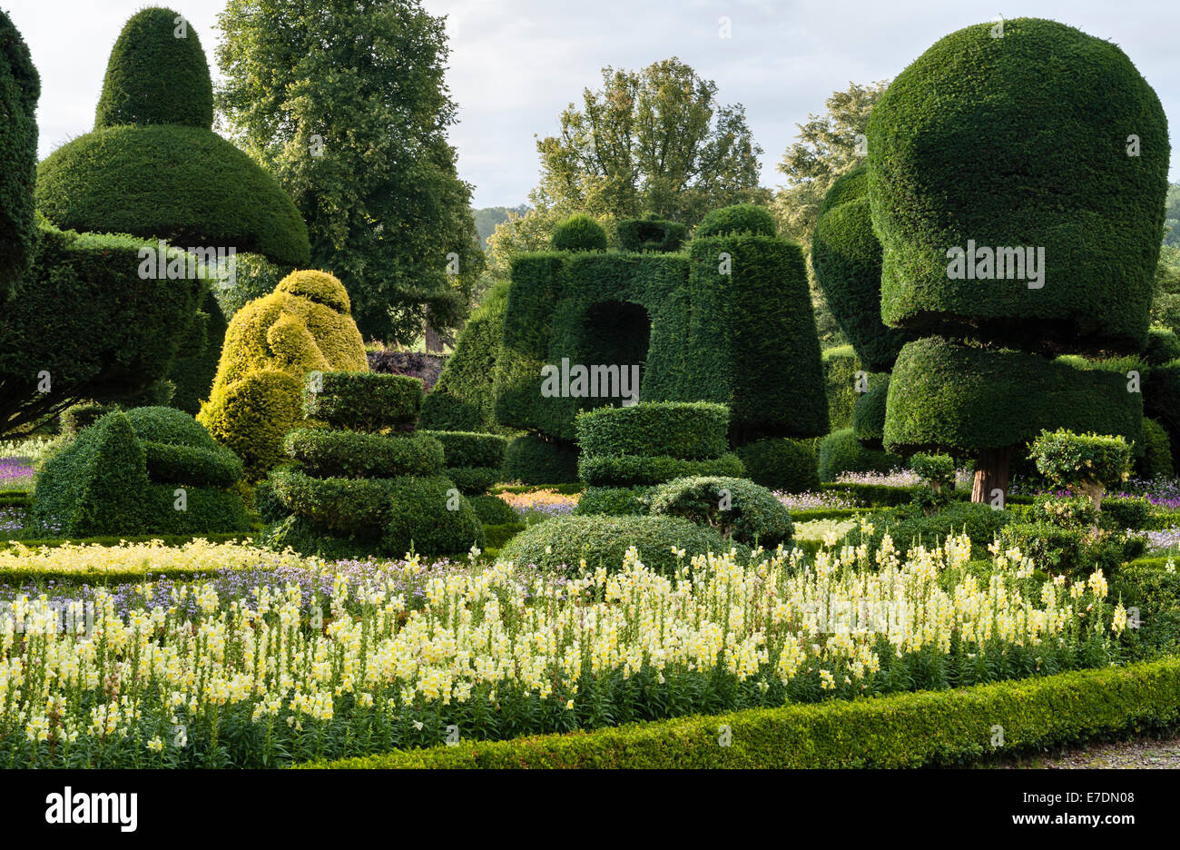 Levens Hall, Cumbria, UK. A late 16c manor house famous for its eccentric topiary garden, owned by the Bagot family - Stock Image