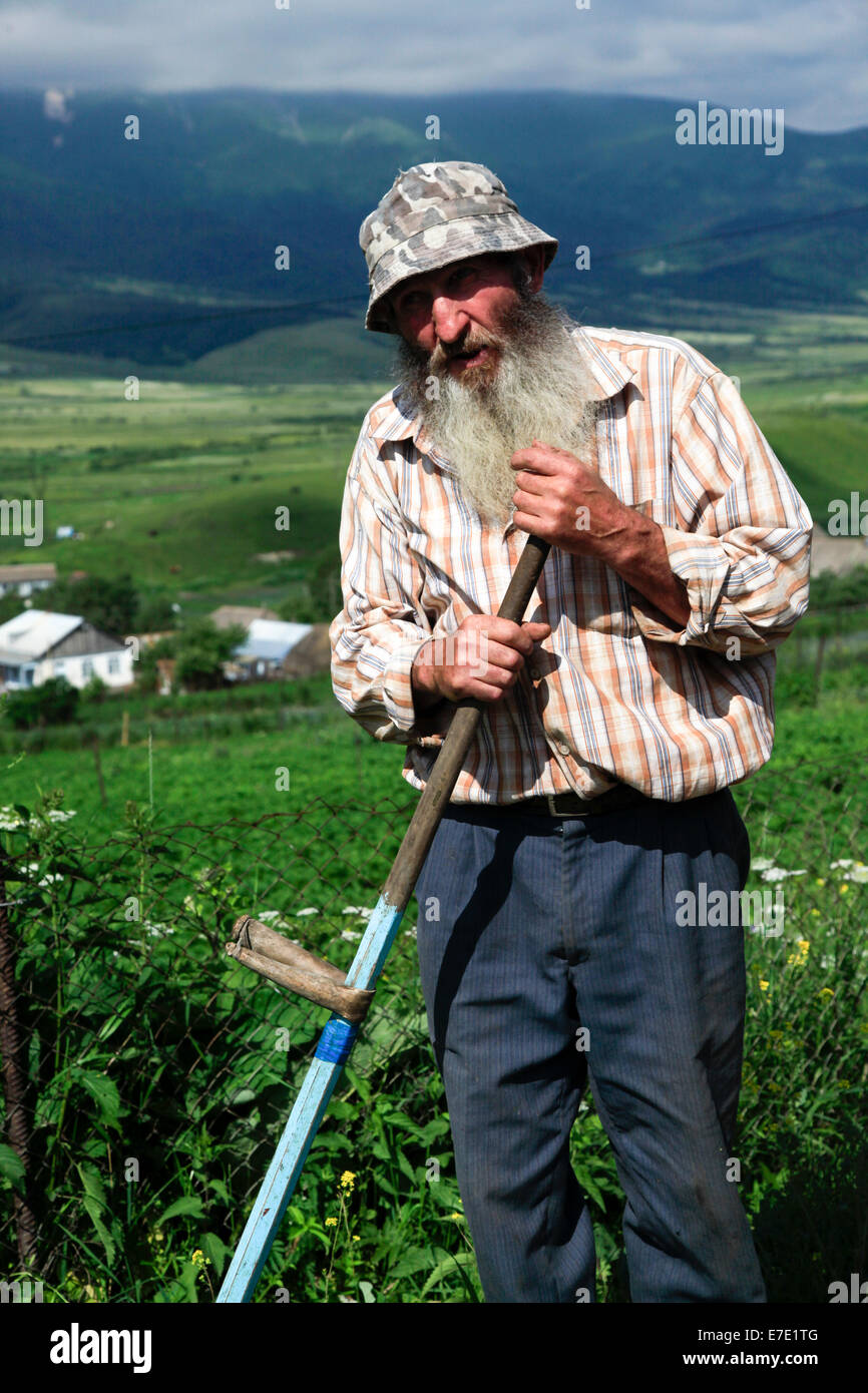 Farmer works in a field with a scythe. Photographed in Armenia - Stock Image