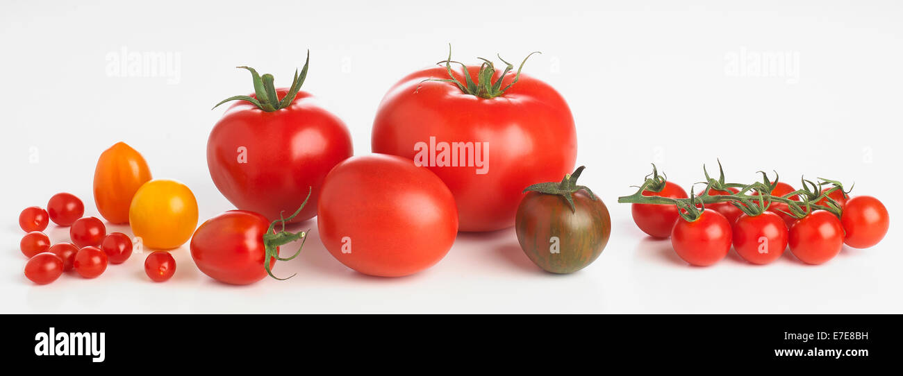 Variety of tomatoes - Stock Image