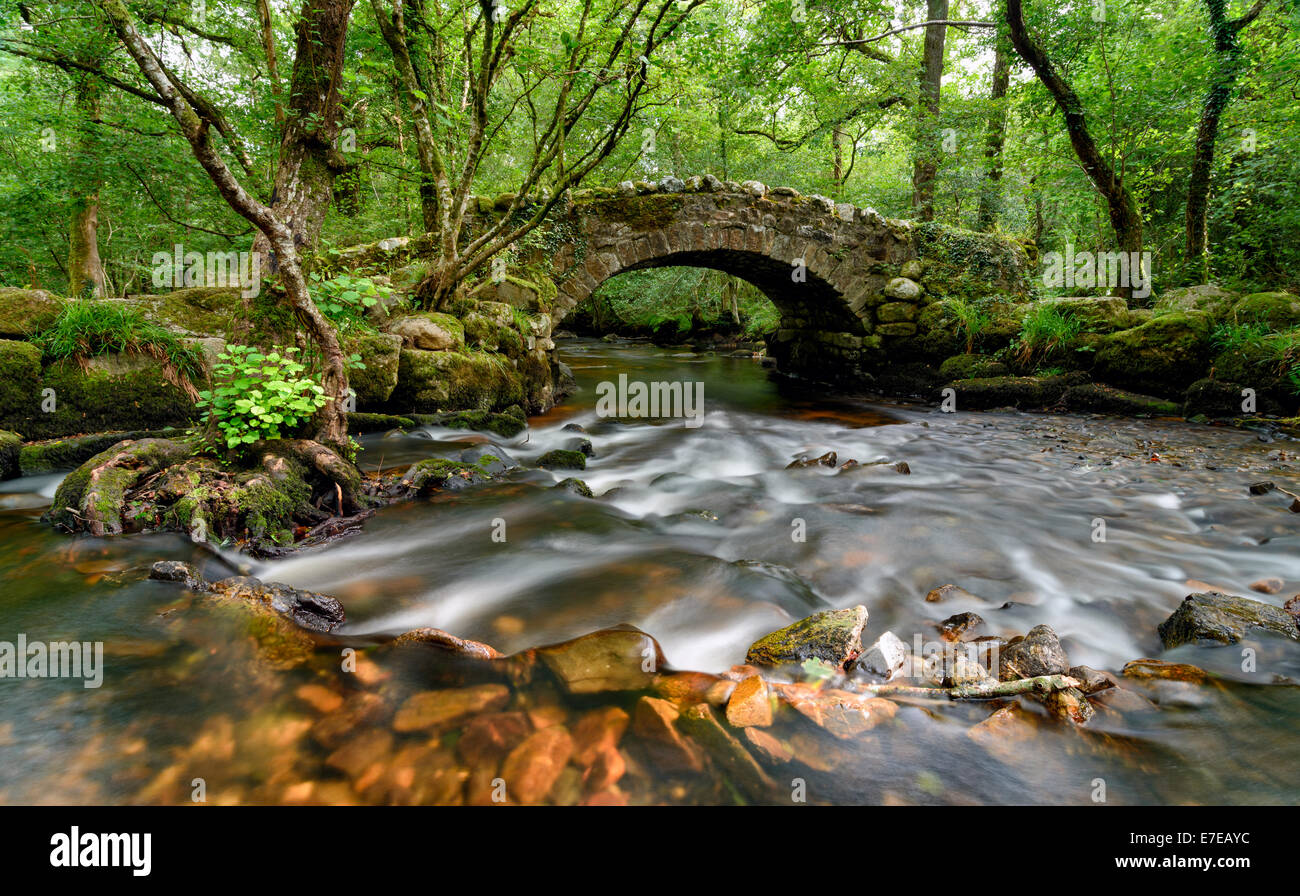 An ancient stone packhorse bridge crossing the River Bovey in Hisley Woods in east Dartmoor - Stock Image