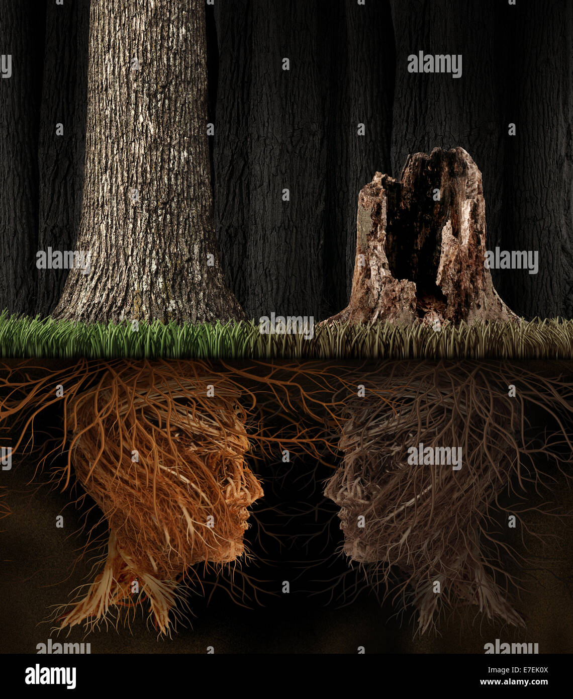 Grief And Grieving concept as two trees with roots shaped as human heads with one dead tree in a forest as a symbol Stock Photo