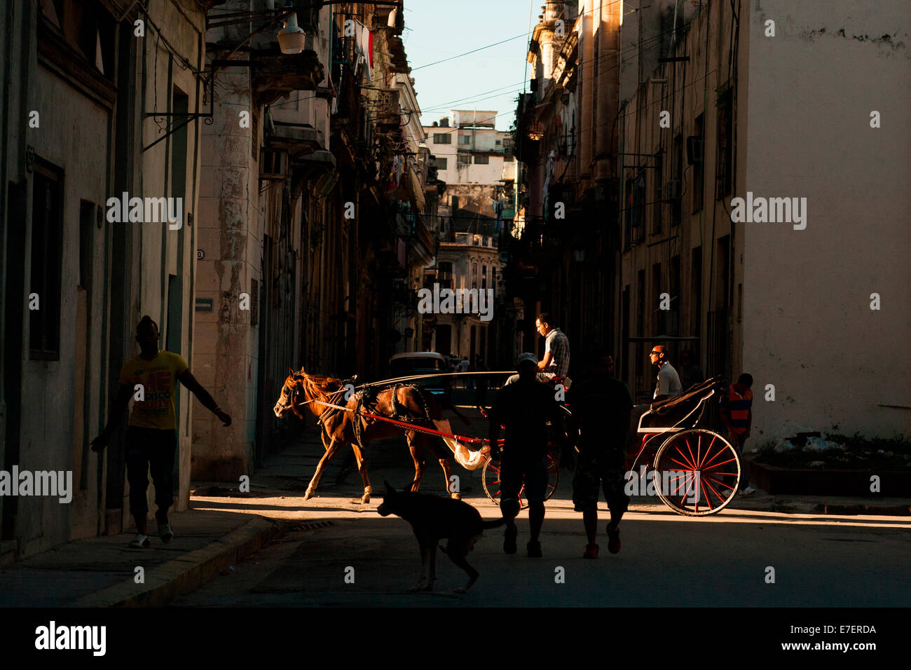 A horse carriage in Havana, Cuba carries its passenger down a side street, into a beam of late afternoon sun. The - Stock Image